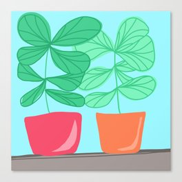 Plants on a window sill Canvas Print