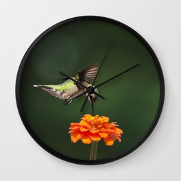 Ruby Throated Hummingbird IV Wall Clock
