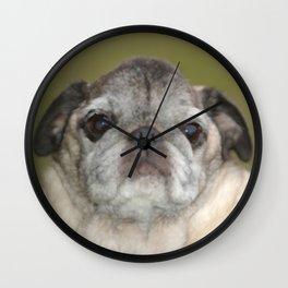 Mops Carlin Pug Dog Wall Clock