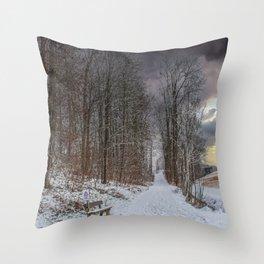 DE - Baden-Württemberg : Winterscenery Throw Pillow