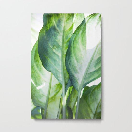 tropic abstract Metal Print