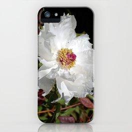 De Light Full iPhone Case