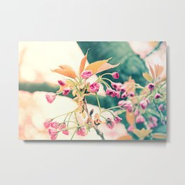 Welcome to Spring Metal Print