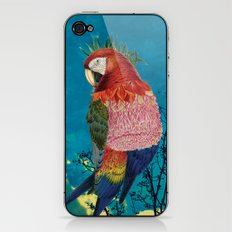 Arara iPhone & iPod Skin