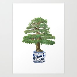 Bonsai tree, green Art Print