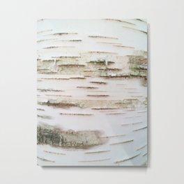 Birch bark Metal Print