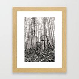 Nurse Stump Pacific Northwest Forest Cedar Trees Sepia Print Framed Art Print