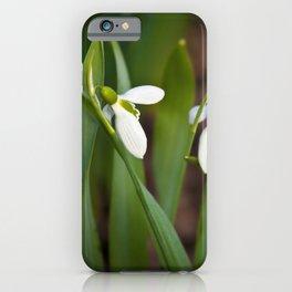 Snow drop flowers Canada iPhone Case