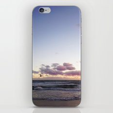 Sunset and Seagull iPhone & iPod Skin