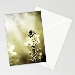 Blur Memories Stationery Cards