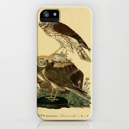 Montagu's Harrier iPhone Case