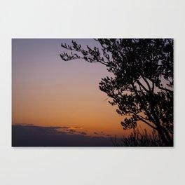 Purple skies of Surrey Canvas Print