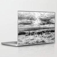 cows Laptop & iPad Skins featuring Resting Cows by David Pyatt