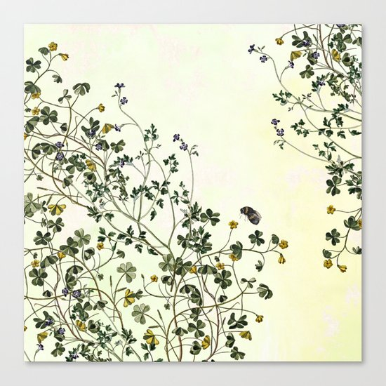The cultivation of wild Canvas Print