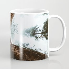 Stand in Awe of the Giant Forest Coffee Mug