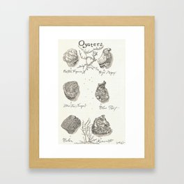 Oysters Framed Art Print