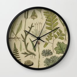 Ferns And Mosses Wall Clock
