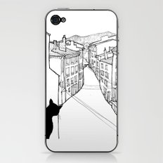 provence's cat iPhone & iPod Skin