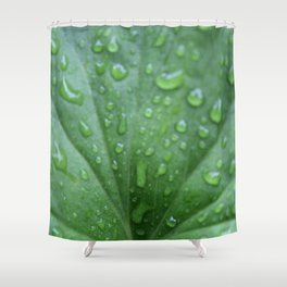 Raindrops on a geranium leaf Shower Curtain