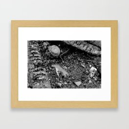 Photographic Irony Framed Art Print