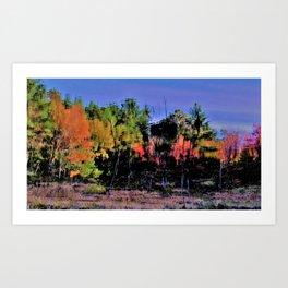 Fall Splash Art Print