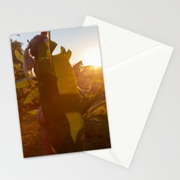 Silhouette Stationery Cards