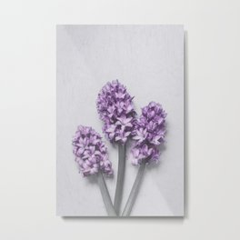 Three Light Purple Hyacinths Metal Print