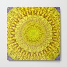 Some Other Mandala 302 Metal Print