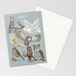 Owls Illustrated Chart Stationery Cards