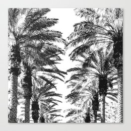 {2 of 2} Palm Tree Canopy // Topical Summer Beach Black and White Sky Canvas Print