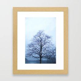 Bare Tree in a Blue Fog Framed Art Print