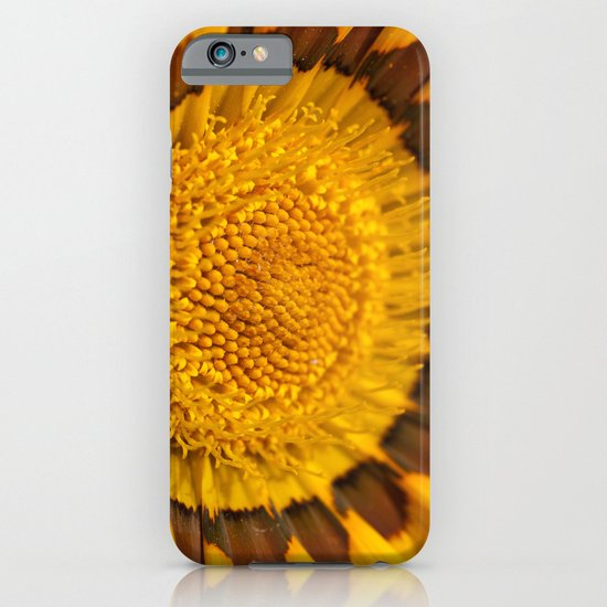 Gazania Macro iPhone & iPod Case