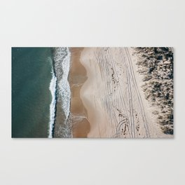 Moody Shore Canvas Print
