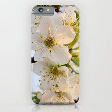 Cherry Blossom Flowers Slim Case iPhone 6s
