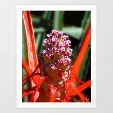 Succulent Blossom I Art Print