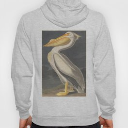 Vintage Illustration of a White Pelican (1863) Hoody