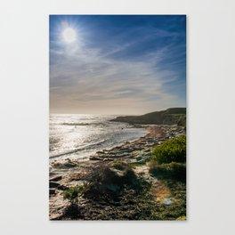 Sunstar at Ano Nuevo State Reserve California Canvas Print