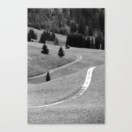 Winding road #2 Canvas Print