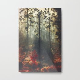 weight of light Metal Print
