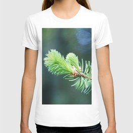 Spruce branch in spring. T-shirt