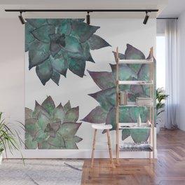 Succulents Wall Mural