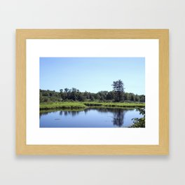 Waters of the Forest 02 Framed Art Print