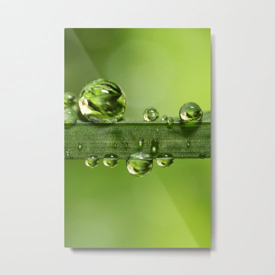 Gloriously Green Metal Print