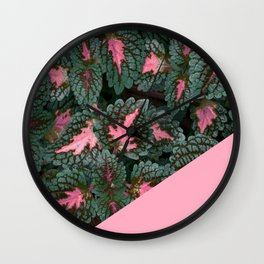 Pink on Coleus Plant Wall Clock