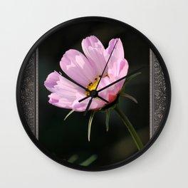 Cosmos named Sea Shells Pink Wall Clock