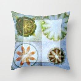 Lignin Spacing Flowers  ID:16165-040505-07411 Throw Pillow