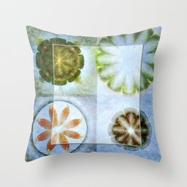 Lignin Spacing Flowers  ID:16165-040505-07411 Throw Pillow
