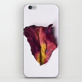 Dried Rose Petal iPhone Skin