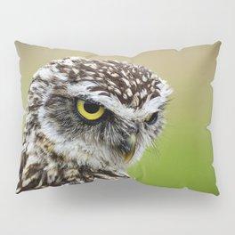 Burrowing Owl Little Pillow Sham
