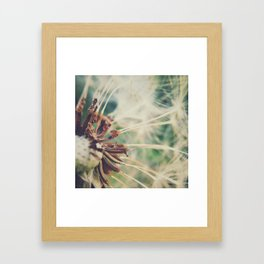 Dandelion || Spores Framed Art Print
